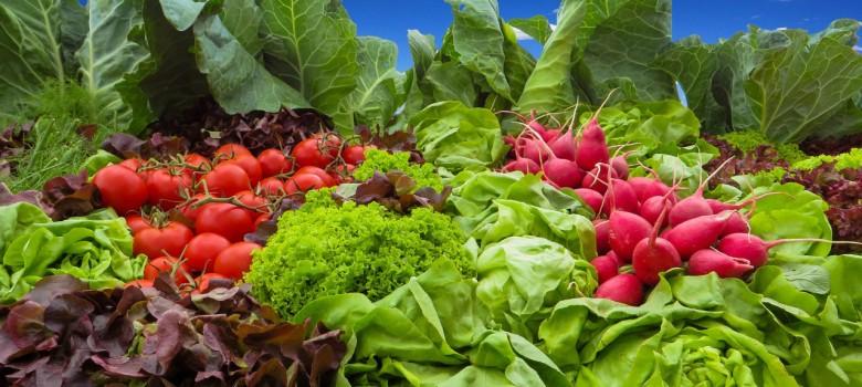 Alimenti disintossicanti da inserire nella tua dieta